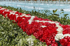 Installation of carnations on a flower festival in Baku Royalty Free Stock Photo