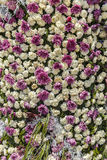 Installation of cloves and chrysanthemums on a flower festival i Stock Photography