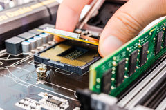Installation of computer memory and processor Royalty Free Stock Image