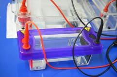Installation d'électrophorèse Photo libre de droits