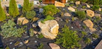 Installation d'irrigation par égouttement dans le jardin du style japonais Photographie stock libre de droits