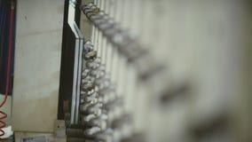 Installation des Glases im Metallrahmen Plastikfenster Glaseinheit stock video