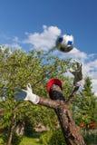 Installation du football dans le jardin, Russie Images libres de droits