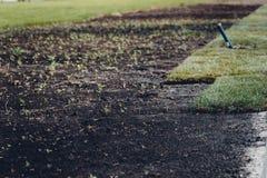 Installation eller lägga av en grön gräsmatta royaltyfri foto