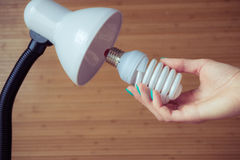 Installation of a modern economical bulb in a table lamp Royalty Free Stock Photo