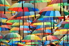 Multicolored umbrellas in the park Royalty Free Stock Image