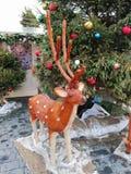 Installationen av en hjort på mässan royaltyfria foton