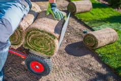 Installatore dei tappeti erbosi dell'erba fotografia stock libera da diritti