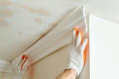 Installazione dei modanature del soffitto Immagine Stock Libera da Diritti
