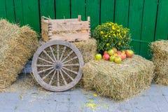 Installazione del mercato dell'agricoltore Fotografia Stock