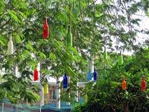 installazione di arte in Auroville fotografie stock