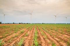Installazioni di energia eolica nell'agricoltura il paese Fotografia Stock Libera da Diritti