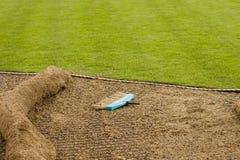 Installieren der neuen Grasscholle stockbild