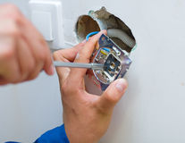 Installing an electrical plug / contact Stock Photography
