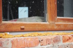 Installing plastic window in brick house with caulking gun foam stock photo