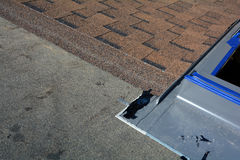 Installing Skylights in new house. Bitumen roof shingles. Vapor barrier and Waterproofing. Unfinished roof. Stock Photos