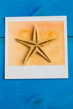 Instant Frames of Starfish Royalty Free Stock Photo
