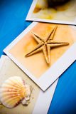 Instant Frames of Starfish and Seashells Stock Image