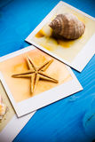 Instant Frames of Starfish and Seashells Royalty Free Stock Photos
