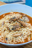Instant noodle and Canned fish Royalty Free Stock Photo
