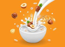 Instant oatmeal with hazelnut. Milk flowing into a bowl with grain and nuts ad. Vector. Instant oatmeal with hazelnut advertising. Milk flowing into a bowl with Stock Images