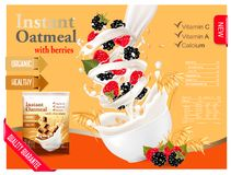 Instant oatmeal with raspberry and blackberry Royalty Free Stock Images