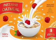 Instant oatmeals with cherry. Oat flakes advertising with milk splash and berry.  Royalty Free Stock Image