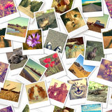 Instant photos. Seamless pattern background. Photo collage stock photos