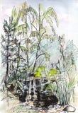 Instant sketch, pond Stock Photos