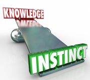 Instinct Vs Knowledge 3d Words See Saw Balance Gut Feeling Stock Photo