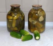Instinto de conservación y vodka Imagenes de archivo