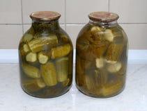 Instinto de conservación y vodka Imagen de archivo