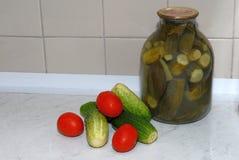 Instinto de conservación y vodka Foto de archivo