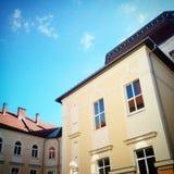 Institute. Transcarpathian Hungarian Institute, Beregovo Royalty Free Stock Image