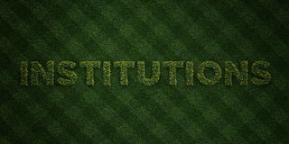 INSTITUTIONS - fresh Grass letters with flowers and dandelions - 3D rendered royalty free stock image Royalty Free Stock Photos