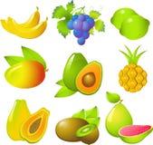 inställda exotiska frukter Royaltyfri Fotografi