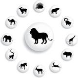 inställda knappar för djur 25b Arkivbilder