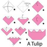 Instruções passo a passo como fazer a origâmi uma tulipa Fotografia de Stock Royalty Free