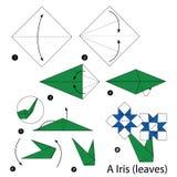 Instrucciones paso a paso cómo hacer el iris de la papiroflexia A (hojas) Fotografía de archivo libre de regalías