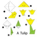 Instrucciones paso a paso cómo hacer el tulipán de la papiroflexia Imagenes de archivo