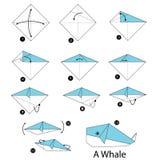 Instrucciones paso a paso cómo hacer la ballena de la papiroflexia Imágenes de archivo libres de regalías