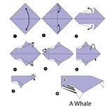 Instrucciones paso a paso cómo hacer la ballena de la papiroflexia Fotos de archivo libres de regalías