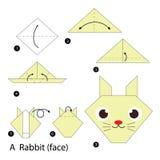 Instrucciones paso a paso cómo hacer papiroflexia un conejo Fotografía de archivo