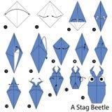 Instrucciones paso a paso cómo hacer papiroflexia un escarabajo de macho Fotografía de archivo