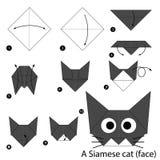 Instrucciones paso a paso cómo hacer papiroflexia un gato Fotografía de archivo libre de regalías