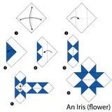 Instrucciones paso a paso cómo hacer papiroflexia un iris Fotografía de archivo libre de regalías