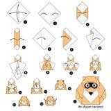 Instrucciones paso a paso cómo hacer papiroflexia un mapache asiático Foto de archivo libre de regalías
