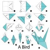 Instrucciones paso a paso cómo hacer papiroflexia un pájaro Imagenes de archivo