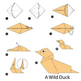 Instrucciones paso a paso cómo hacer papiroflexia un pato salvaje Imágenes de archivo libres de regalías