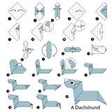 instrucciones paso a paso cómo hacer papiroflexia un perro basset Imágenes de archivo libres de regalías